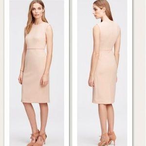 Ann Taylor Blush Sheath Dress